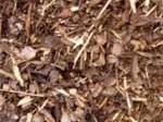 Ecorces de pin sylvestre (pinus sylvestris) 15/25