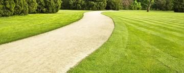 Entretien de votre pelouse dès le 1er jour